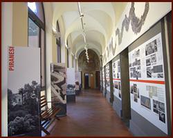 Museo_di_Roma_in_Trastevere_2