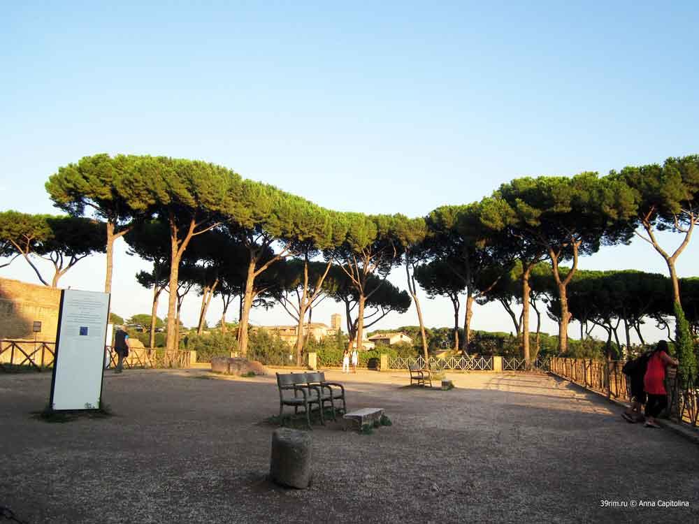 Палатинский_холм Рим Италия Палатин