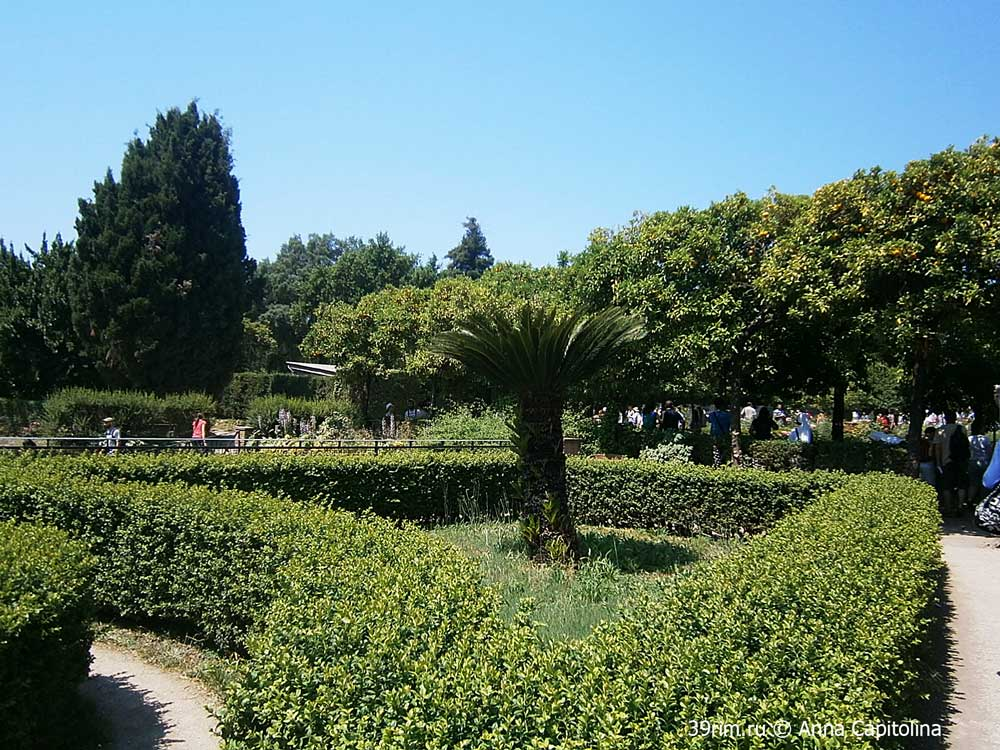 gardens_monte_palatino