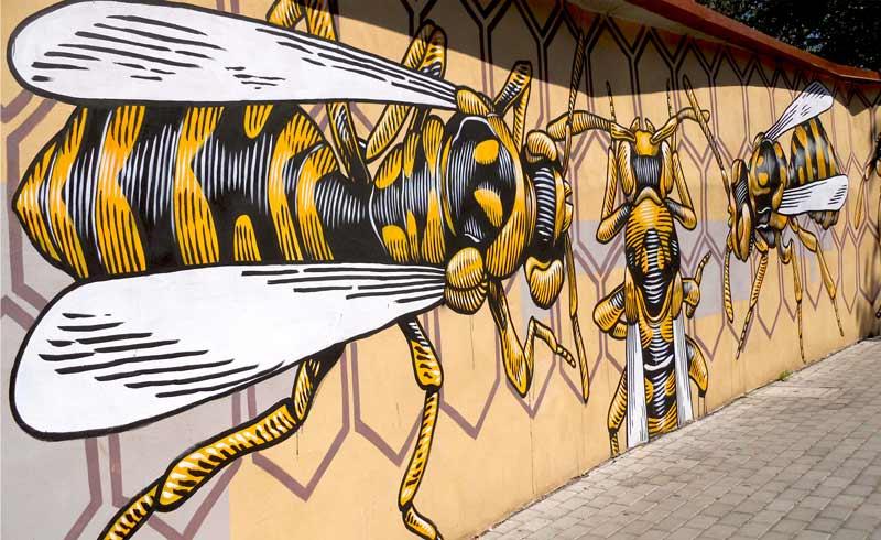 Стрит арт в Риме осиное гнездо