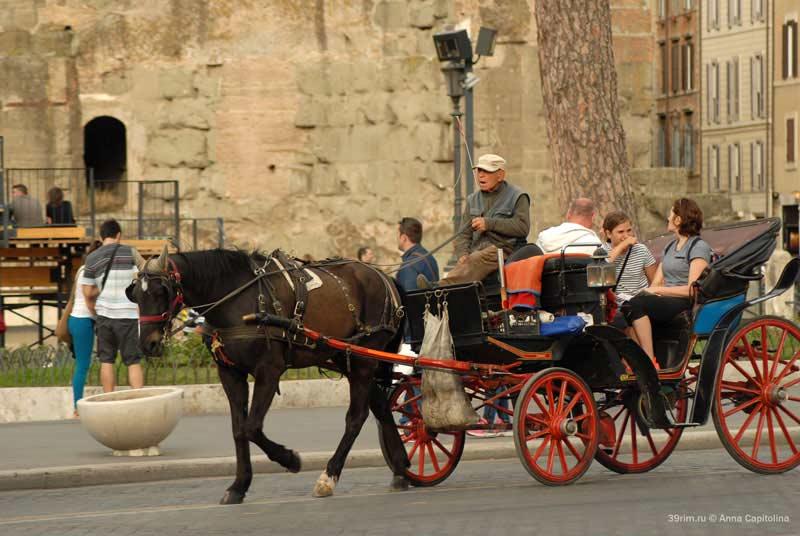 рим в мае конная повозка с туристами